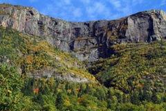 Бореальный лес в осени стоковая фотография rf