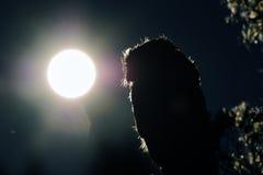 Бореальный контур сыча в ноче Стоковая Фотография RF