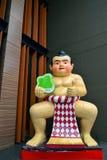 Борец Sumo стоковые фотографии rf