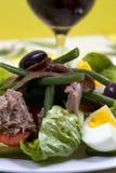 бормотушк черноты фасолей камс одевая vinaigrette туны томатов салата картошек оливок nicoise мустарда зеленого цвета виноградины Стоковое Изображение RF