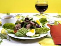бормотушк черноты фасолей камс одевая vinaigrette туны томатов салата картошек оливок nicoise мустарда зеленого цвета виноградины Стоковое Фото