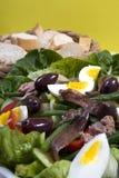 бормотушк черноты фасолей камс одевая vinaigrette туны томатов салата картошек оливок nicoise мустарда зеленого цвета виноградины Стоковые Фотографии RF