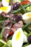 бормотушк черноты фасолей камс одевая vinaigrette туны томатов салата картошек оливок nicoise мустарда зеленого цвета виноградины Стоковые Фото