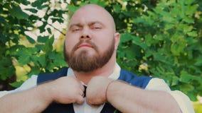Бородатое сало холит в парке на солнечный день сток-видео