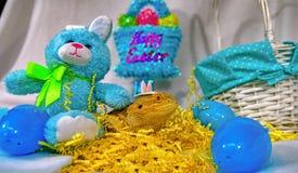 Бородатый дракон с кроликом и корзина на пасхе Стоковое Изображение RF