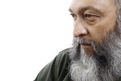 бородатый мужчина Стоковые Изображения