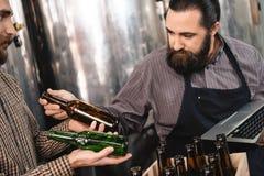 Бородатый специалист по винзавода выбирает бутылку для следующий разливать по бутылкам пива на винзаводе ремесла Стоковые Изображения RF