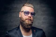 Бородатый человек в фиолетовых солнечных очках изолированных на сером bac виньетки Стоковое Изображение