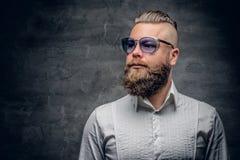 Бородатый человек в фиолетовых солнечных очках изолированных на сером bac виньетки Стоковые Изображения RF