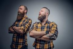 2 бородатых люд в желтой рубашке шотландки Стоковые Фотографии RF