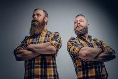 2 бородатых люд в желтой рубашке шотландки Стоковое Изображение
