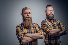 2 бородатых люд в желтой рубашке шотландки Стоковые Изображения RF