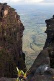 борозда большая Стоковая Фотография