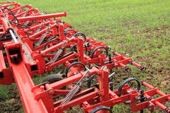 Борона в поле зеленого урожая после осадок Стоковое Изображение