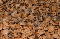 Борона на куче выпарки кокоса Селективный фокус Стоковое Изображение RF