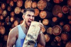 Бородатая персона около древесины кучи тимберса Стоковая Фотография RF