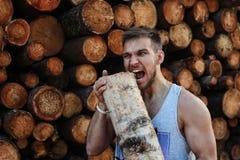 Бородатая персона около древесины кучи тимберса Стоковые Фотографии RF