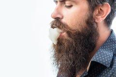Бородатый курить человека моды Стоковая Фотография