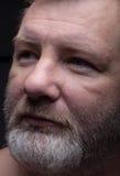 бородатый портрет человека сновидение стоковое изображение rf