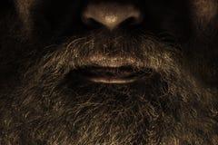 Борода Стоковая Фотография