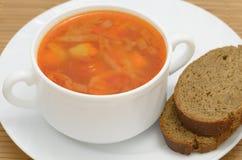 борщ супа с хлебом рож Стоковое Изображение RF