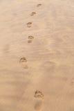 Босоногие печати на пляже Стоковая Фотография RF