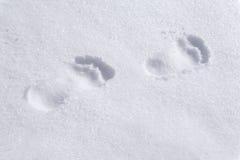 Босоногие следы ноги на снеге стоковое фото