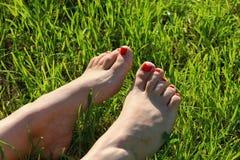 Босые ноги на зеленой траве, космосе экземпляра Стоковые Изображения