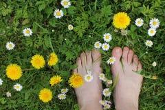 Босые ноги на траве весны, цветки Стоковое Изображение