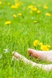 Босые ноги ребенка отдыхая на солнечном зеленом луге с яркой выкрикивают Стоковое Изображение