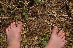 Босые ноги ребенка стоковая фотография rf