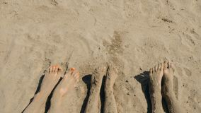 Босые ноги семьи на береге Стоковое фото RF