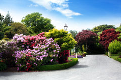 ботанические сады Стоковые Изображения RF