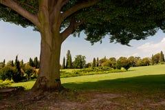 Ботанический парк Стоковая Фотография RF