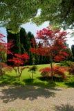Ботанический парк Стоковое Изображение RF