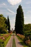Ботанический парк Стоковые Фотографии RF