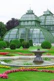 Ботанический сад Вена стоковая фотография rf