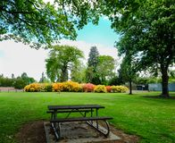 Ботанический сад в Крайстчёрче, Новой Зеландии Стоковые Фотографии RF
