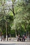 Ботанический сад старые люди Стоковая Фотография RF