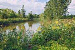 Ботанический сад с деревьями, водой и цветками Природа и trave Стоковое Изображение