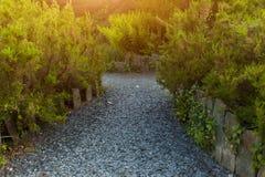 Ботанический сад Le Vallon du ужалил Alar Брест Францию 27 может 2018 - идя след стоковая фотография rf