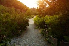 Ботанический сад Le Vallon du ужалил Alar Брест Францию 28 может 2018 - идя след стоковые фото