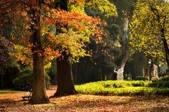 Ботанический сад, Буэнос-Айрес стоковые изображения rf