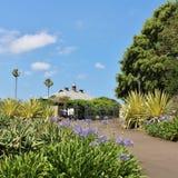 ботанический сад королевский Сидней Стоковые Изображения RF