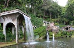 ботанический сад Стоковые Фото
