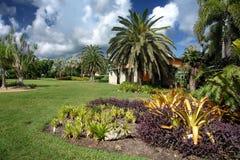 ботанический fairchild садовничает тропическо Стоковые Фото