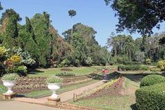 2 ботанических сада Стоковая Фотография