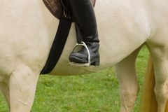 Ботинки верховой езды и стремена Стоковое Изображение RF