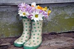 Ботинки весны Стоковое Изображение