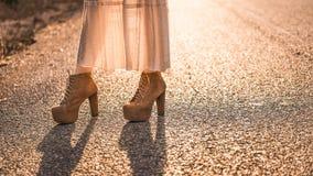 Ботинки высокой пятки Брайна кожаные Стоковые Фотографии RF